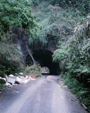 写真:畑トンネル南側入口